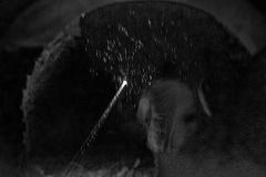 Bludna hvezda_00128b