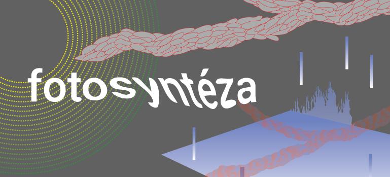 fotosynteza-FB