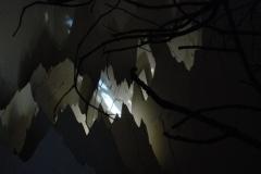01_35m2-2012-antidrahokam09-w